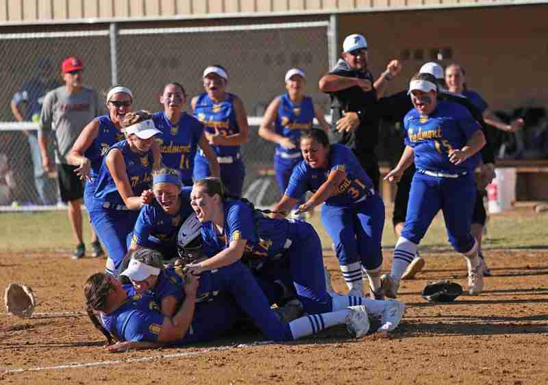 Piedmont Wildcat Softball Team Celebrate